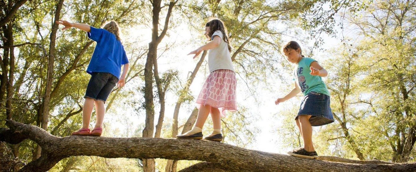 Three Children Balancing on a Tree Branch